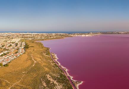 laguna, Torrevieja
