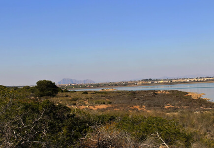 Laguna La Mata